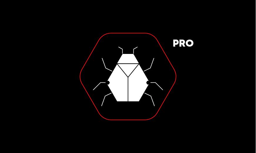Bug Hunting Professional