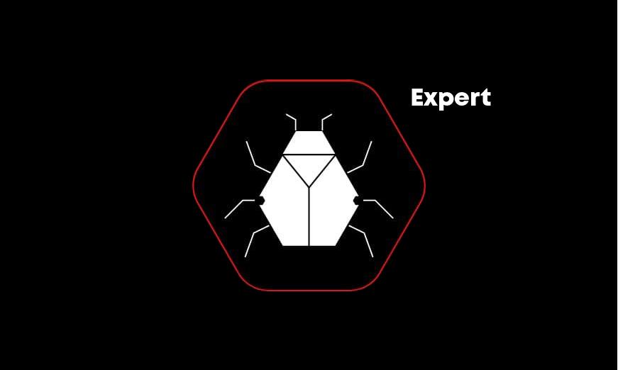 Web Hacking Expert