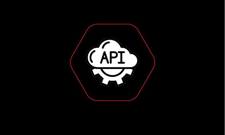 API Bug Hunting