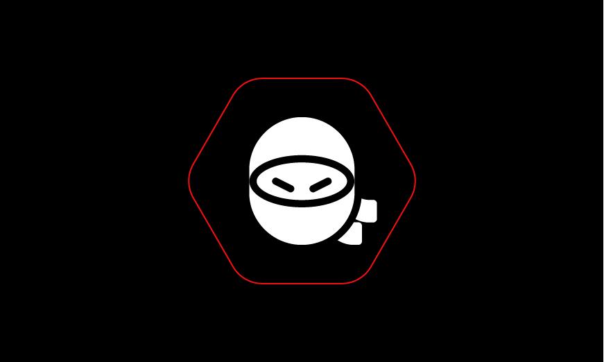 Hack Like a Ninja